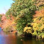 Wood-Pawcatuck Watershed Will Join National Wild and Scenic River System