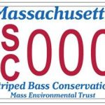 Baker-Polito Administration Announces Availability of Striped Bass License Plate