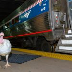 Amtrak Adds More Frequencies and Extra Capacity on Most Northeast Trains for Thanksgiving Week Travel