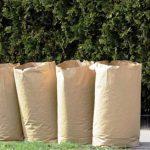 Finaliza la recolección de desechos de jardín para la semana de la temporada del 7 al 11 de diciembre