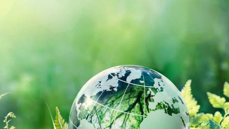 Reed & Collins introducen la Ley de Modernización Ecológica para mejorar la eficiencia energética y ayudar a las familias trabajadoras a reducir las facturas de energía